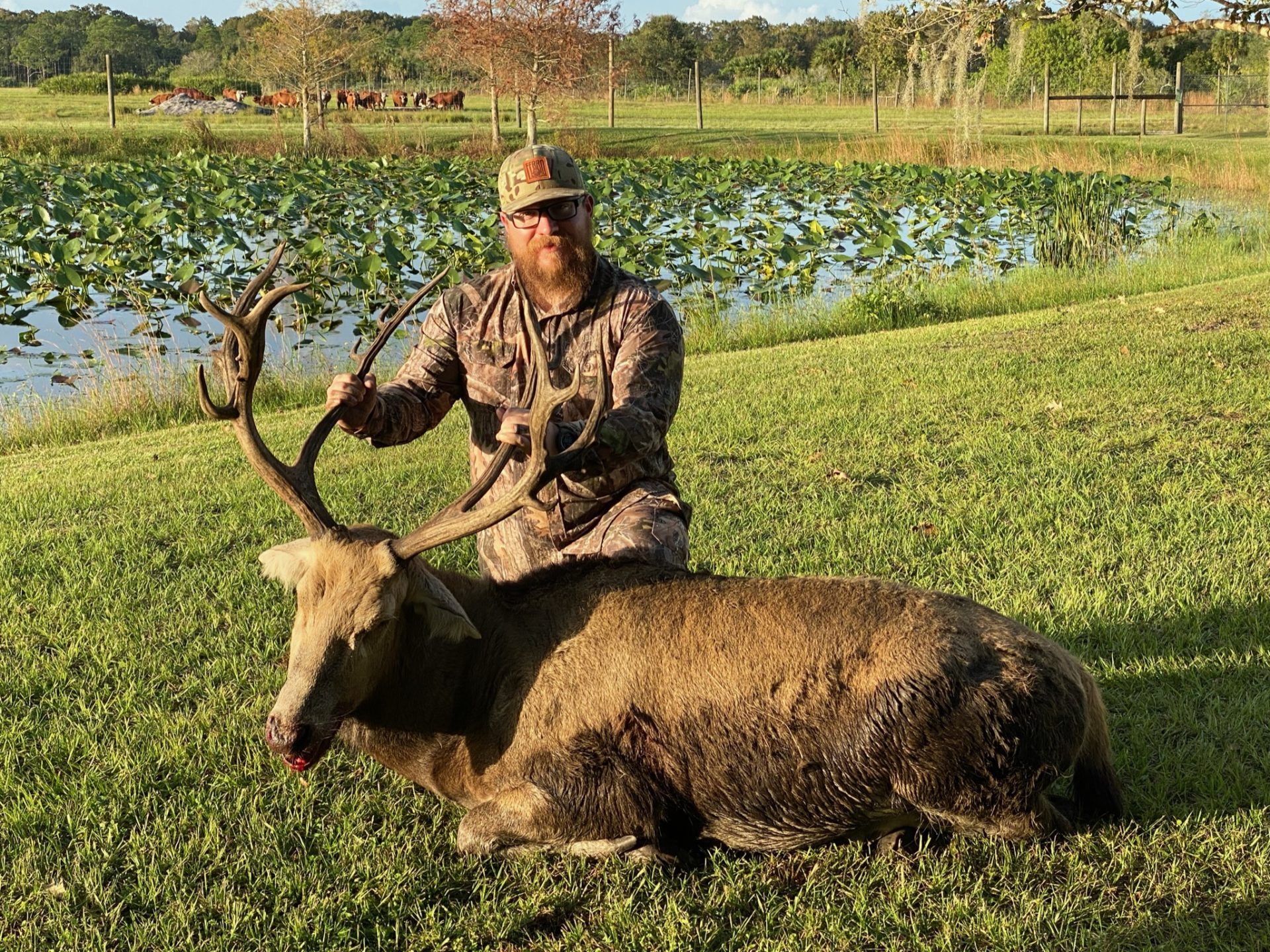 Pere David Antlered Acres Florida Hunting